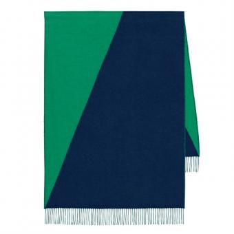 Top Quality Hermes Casaque Stole In Green And Black Cashmere